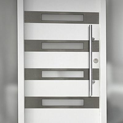 Modern exterior interior doors front doors in chicago il edi doors for Modern interior doors los angeles